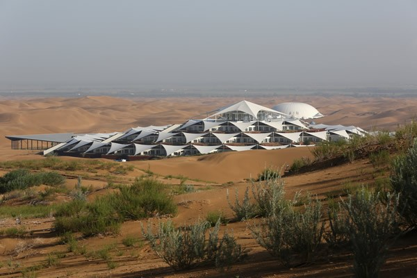Desert Lotus Hotel1
