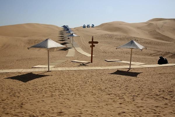 Desert Lotus Hotel3