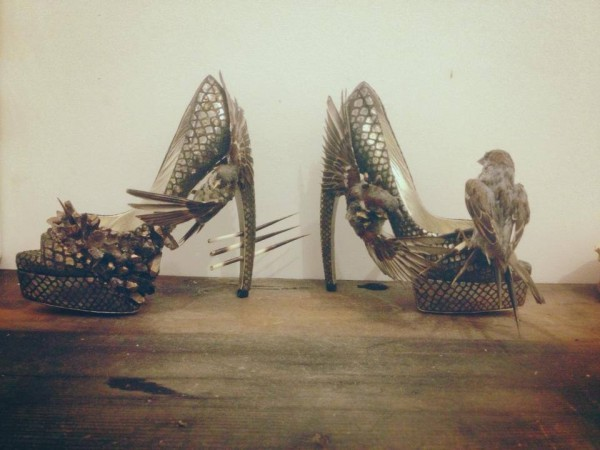 Taxidermy shoes