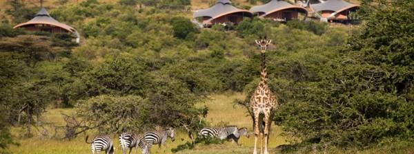 Mahali Mzuri Safari2