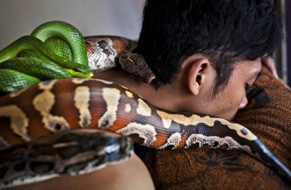 Python Massage1