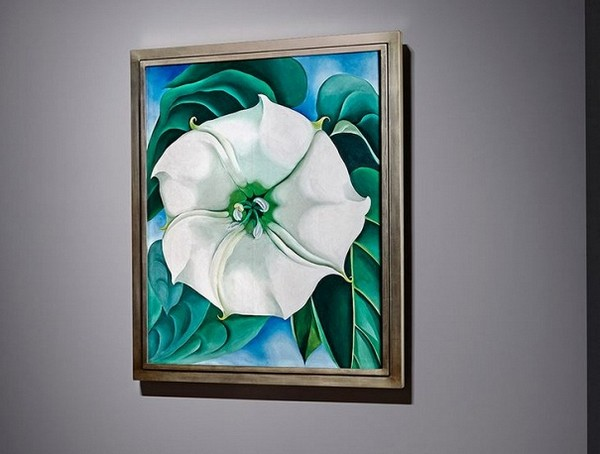 Georgia OKeeffe White Flower No1