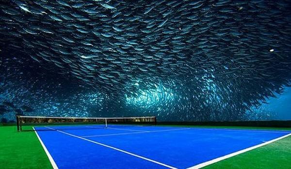 Dubai Underwater Tennis Court