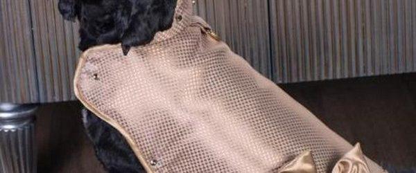 Компания Doggy Armour и VeryFirstTo.com представили первую в мире золотую бронированную накидку для собак. Она создана с использование революционной технологии нано металлизации материала, благодаря которой удалось сделать настоящую золотую ткань […]
